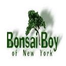 Bonsai Boy